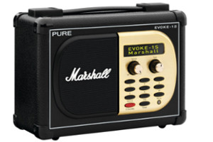 Internetradio Pure Evoke 1s Marshall